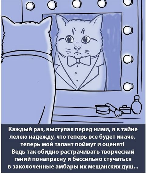 кот 1