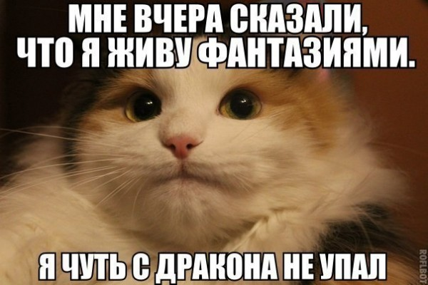 Ky0oQYeRDzc