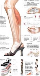 the-true-effect-of-high-heels_51c226f8d1724