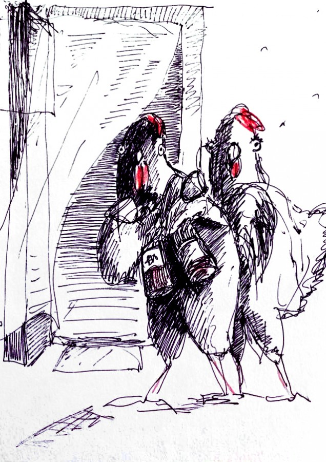 rooster_and_chiken_crocuise