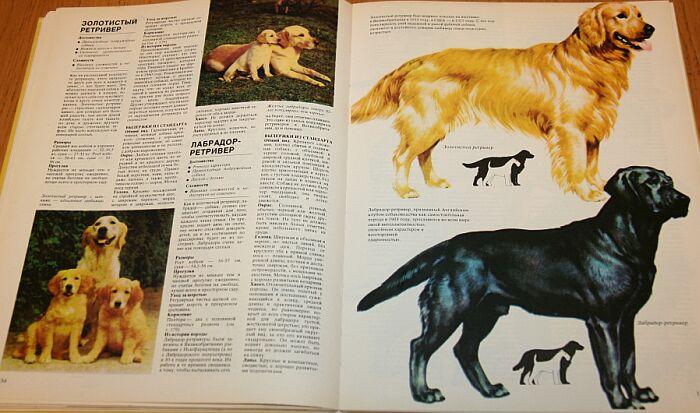 Книга Ваша Собака Джоан Палмер