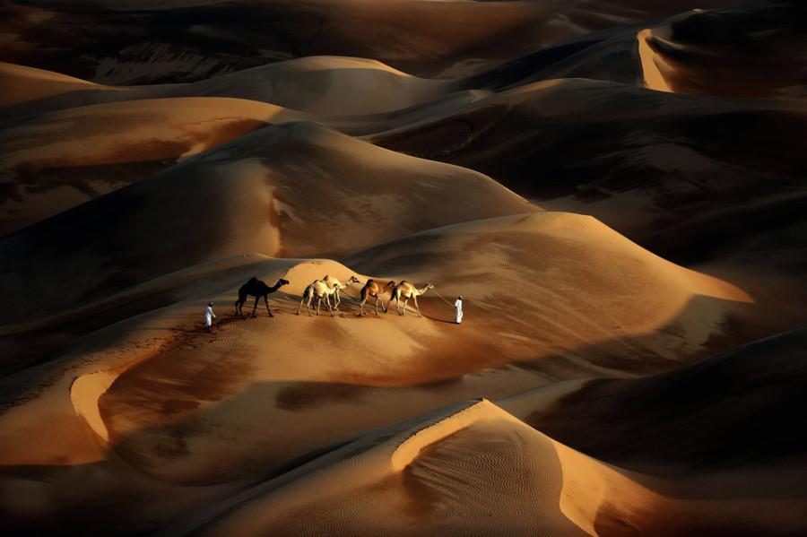 Караван в пустыне Лива