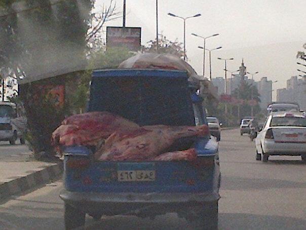 местный способ транспортировки мяса