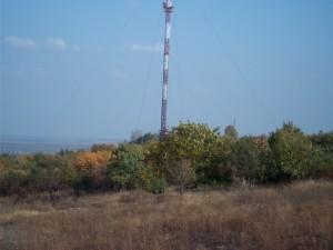 IMGP0351