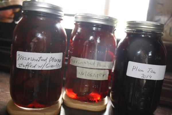 Zagotovki Plums Stuffed with garlic plum jam