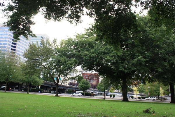 Portland 16