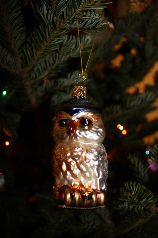 Owl Academic