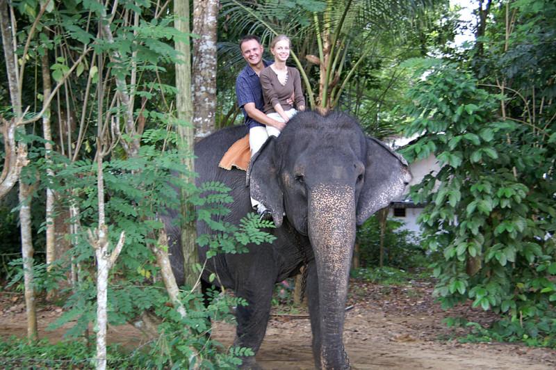 А в джунглях — слоны :)!