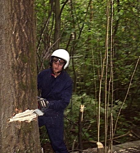 Что мы делали в лесу с бензопилами :)?