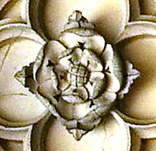 32_Tudor-Rose