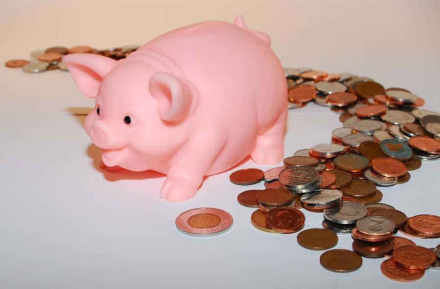 картинка свинка в деньгах той