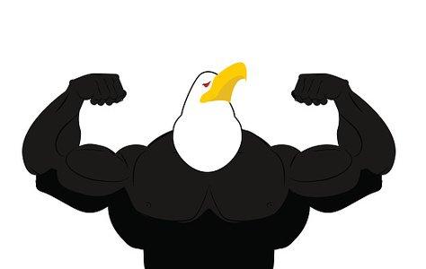 Самая сильная птица в мире