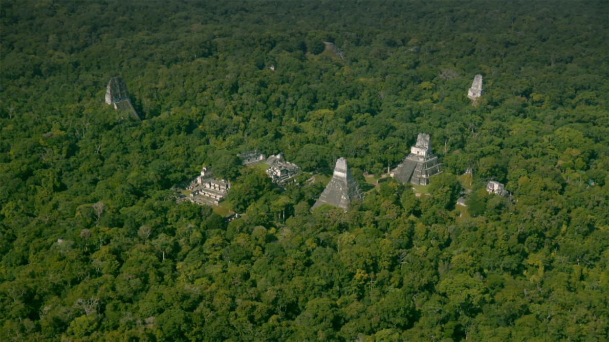 Найдены 60 000 построек майя в джунглях Гватемалы