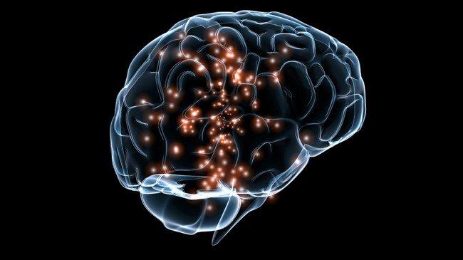Как появился миф о том, что мозг работает только на 10%? нейроны, только, работает, Когда, мозге, нейронов, детстве, одновременно, поэтому, возрасте, видеть, больше, человек, этого, время, например, связи, просто, чтобы, взрослом
