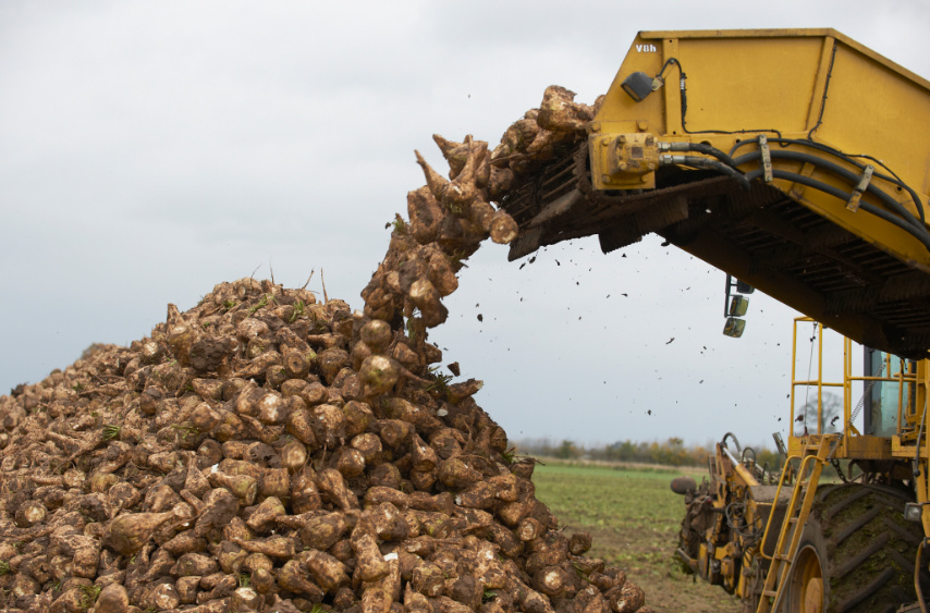 Впервые в истории Россия не производила сахар из импортного сырья