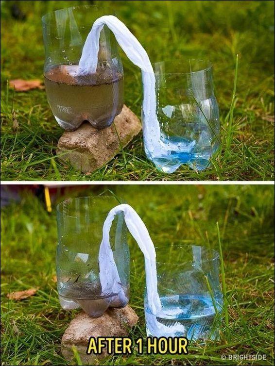 Лайфхак: получить чистую воду на природе
