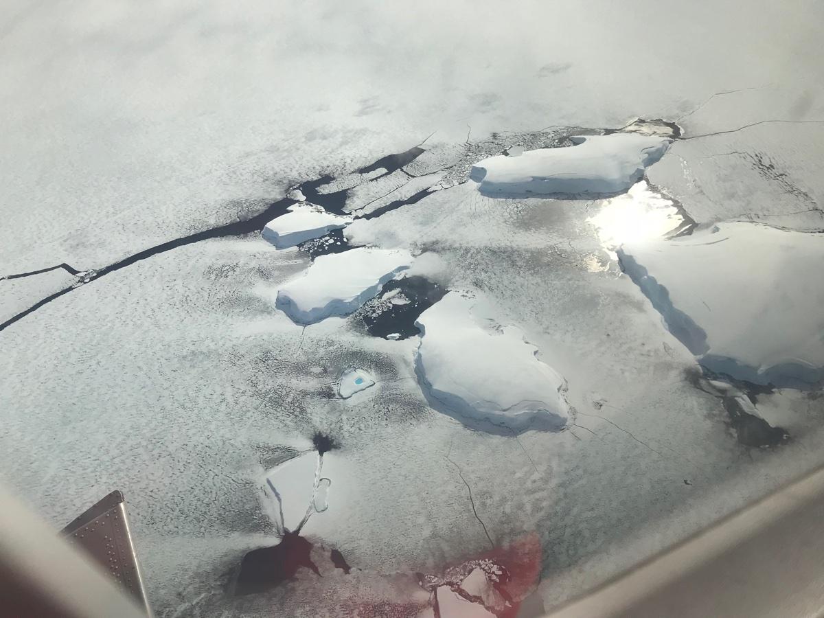 Антарктида теряет лед