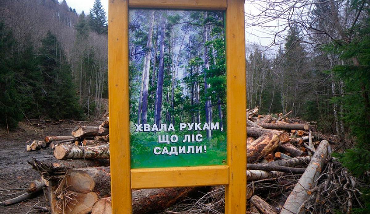 Украина на первом месте по... Earthsight, древесины, экспорт, страны, Украине, Украины, говорится, вывозят, экспорта, данным, незаконной, больше, крупнейших, рубок, лесозаготовительных, санитарного, рынок, действует, исследовании, стран