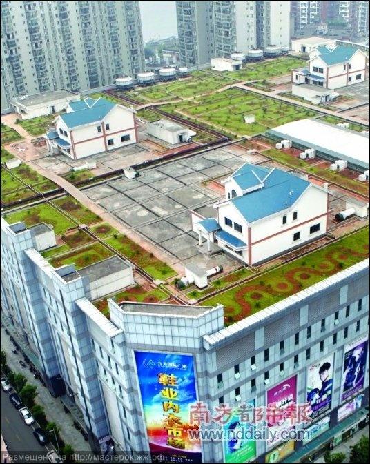 living-on-the-roof-05 (Копировать)
