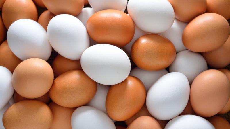 Какая разница между коричневыми и белыми яйцами?