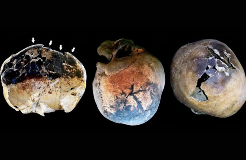 Жестокая смерть у подножия Везувия осадок, Везувий, ученых, жестокая, извержения, жертв, костей, найденных, черепа, изнутри, рядом, железа, произошло, воздействия, людей, исследователей, вследствие, экстремально, высоких, температур»