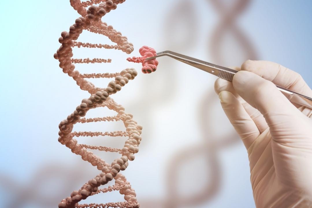 В Китае родились генетически отредактированные дети