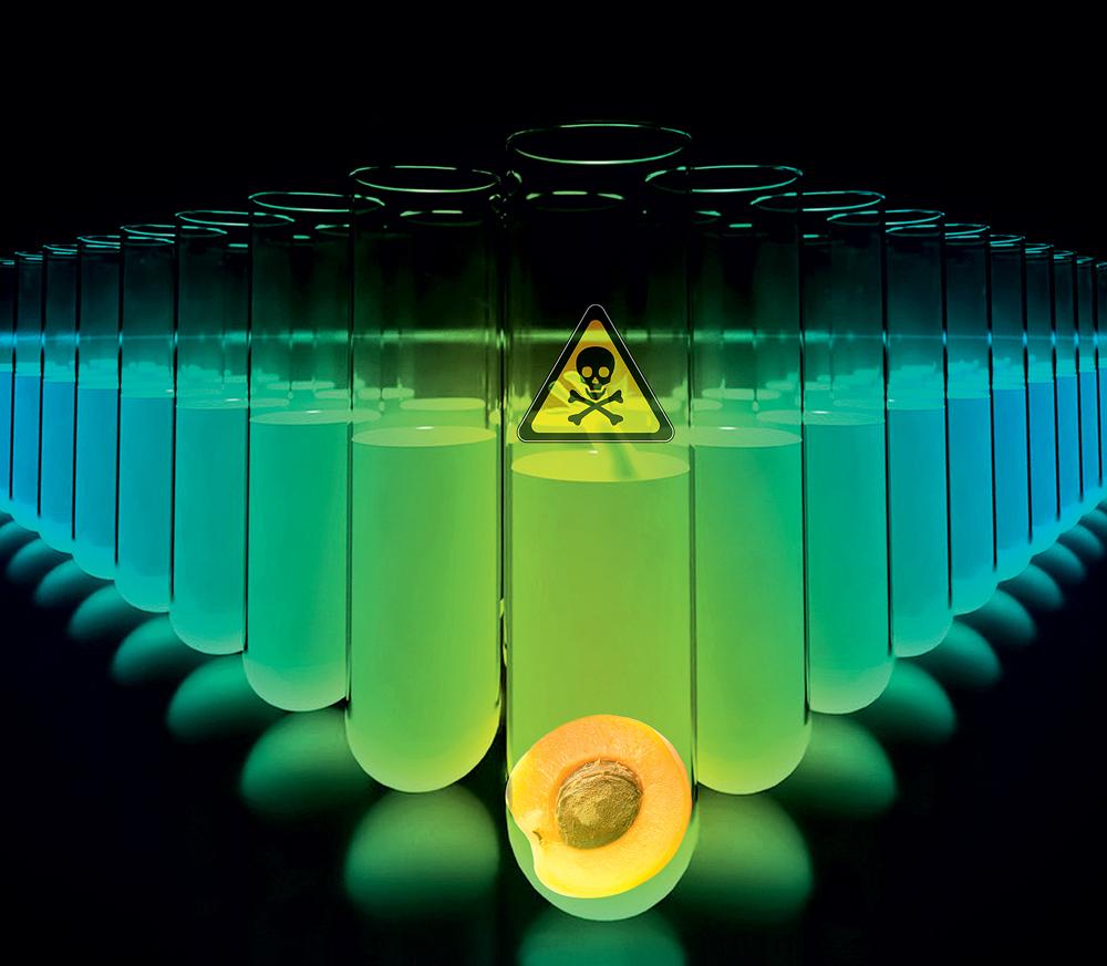Как работает цианистый калий