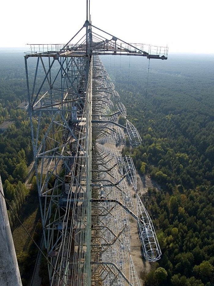 Чернобыльский дятел