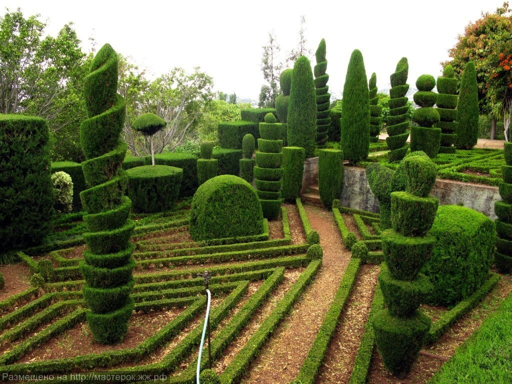 madeira botanical garden2 (Копировать)