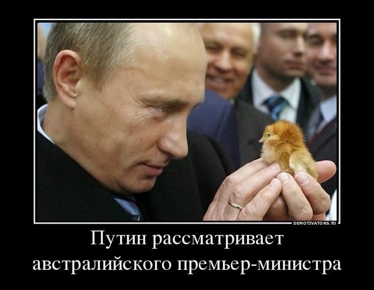 Путин141