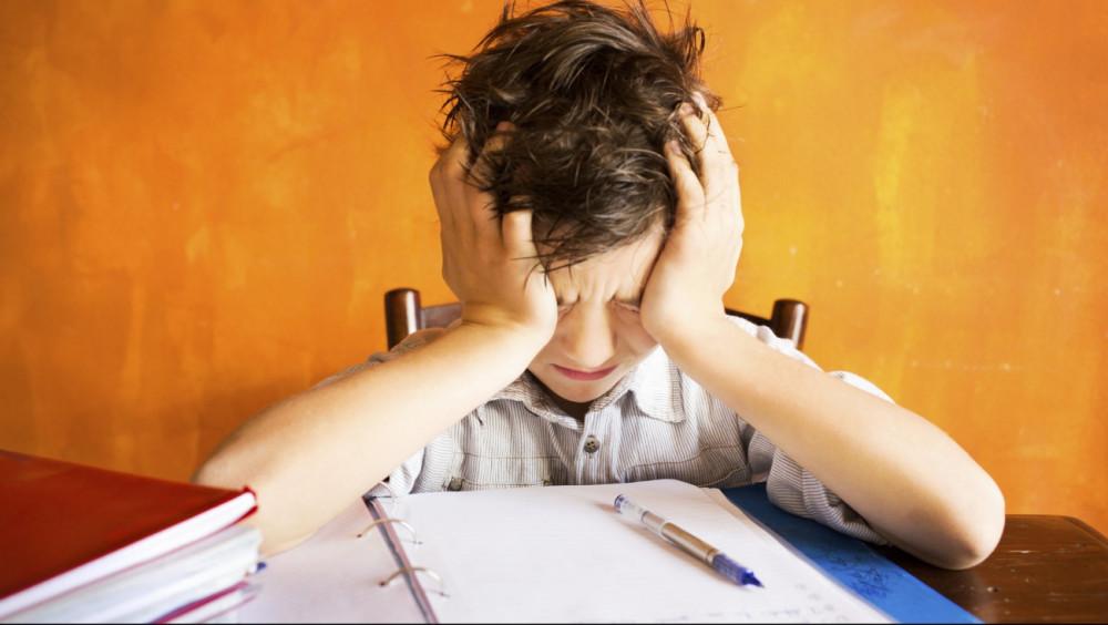 В школах России перестанут задавать домашние задания?