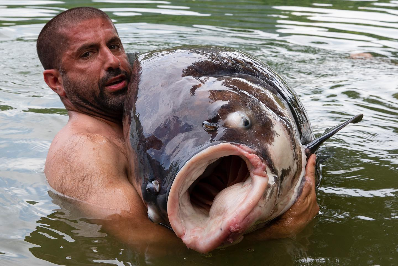 Как он убил рыбу? Рыба