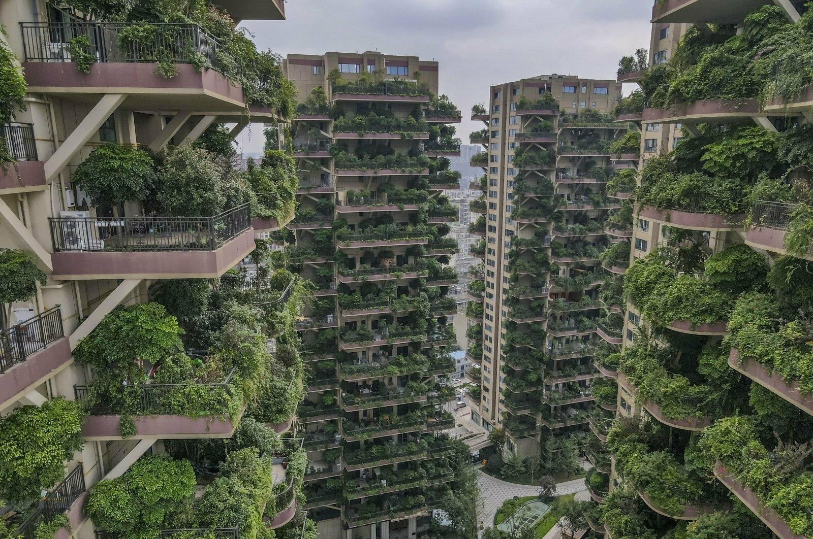 """Жилой комплекс с """"вертикальным лесом"""" """"провалился"""" Архитектура,Китай"""