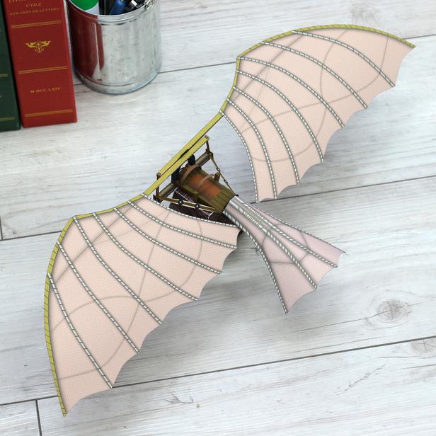 Какой самолет появился раньше: настоящий или бумажный? Вопросы