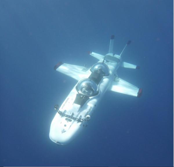 Под водой на крыльях