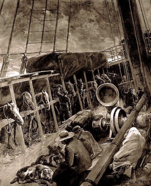 Живность на кораблях парусной эпохи Интересно