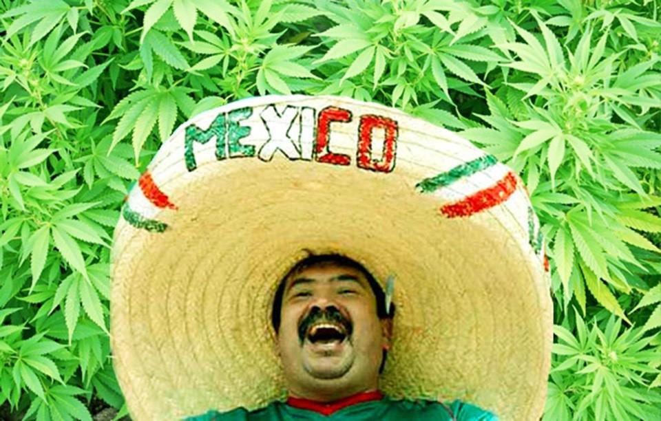 В Мексике марихуана одобрена по всей стране Мексика