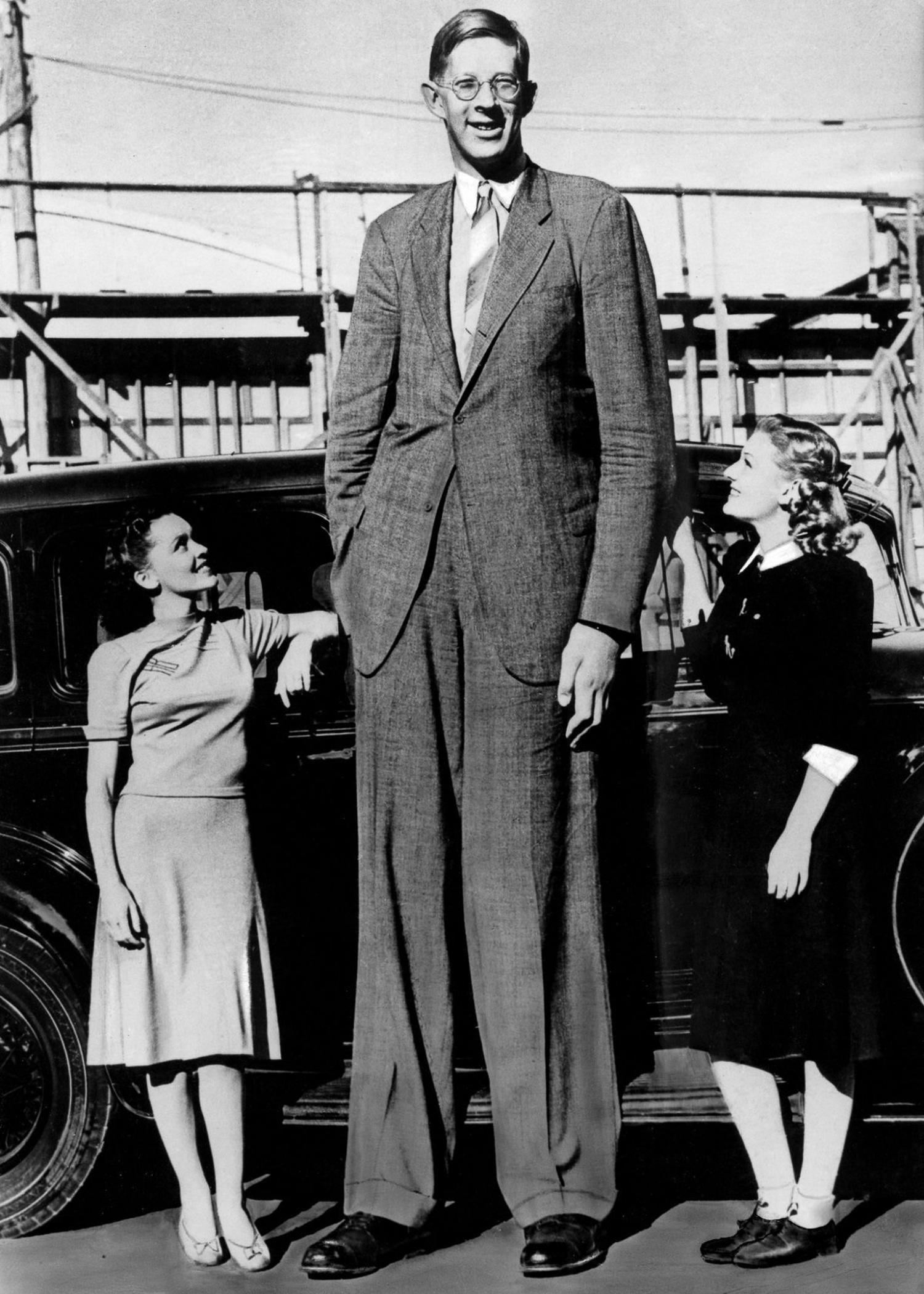 3,5-метровый гигант Кап Два с двумя головами Разоблачаем