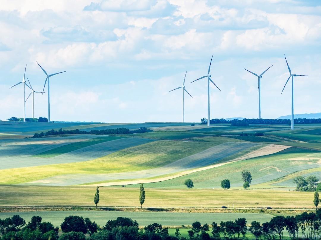 «Зеленый пакт» ЕС как индустриальный коллапс Европы Энергия