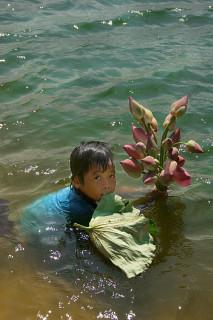 Девочка в озере лотосов