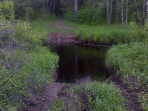 Волчья без моста