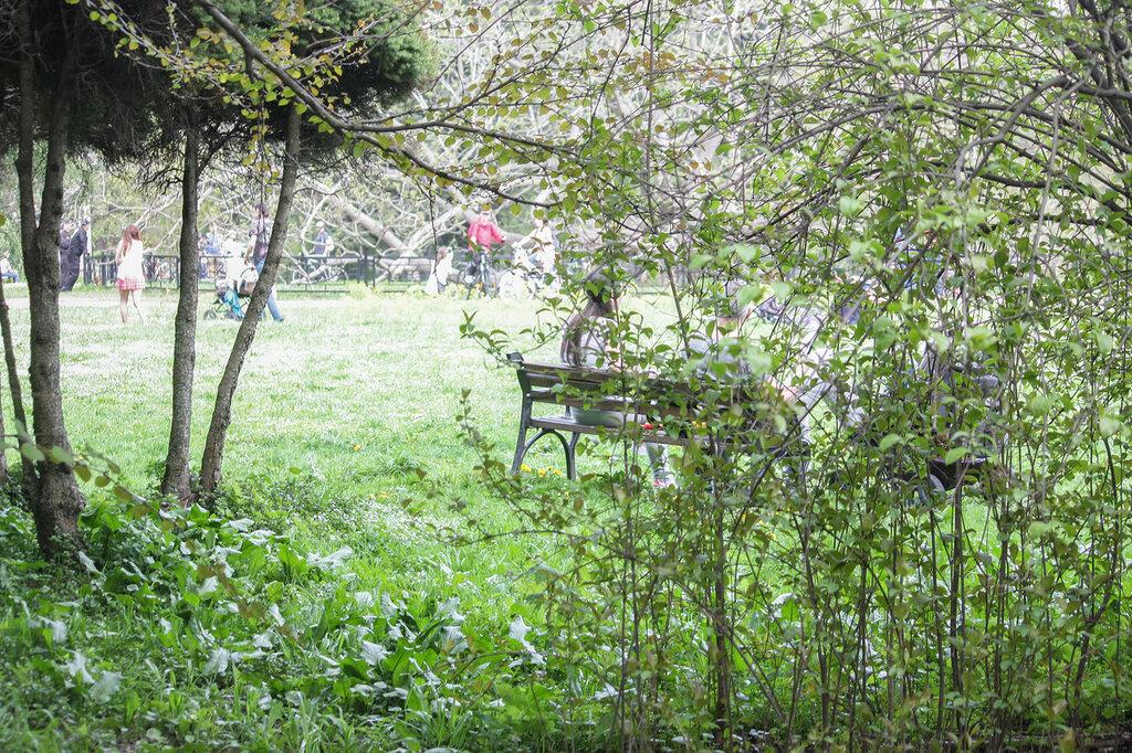 Главный ботанический сад-34.jpg