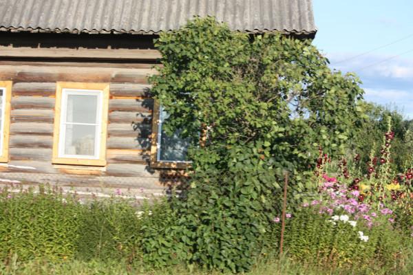Деревня89