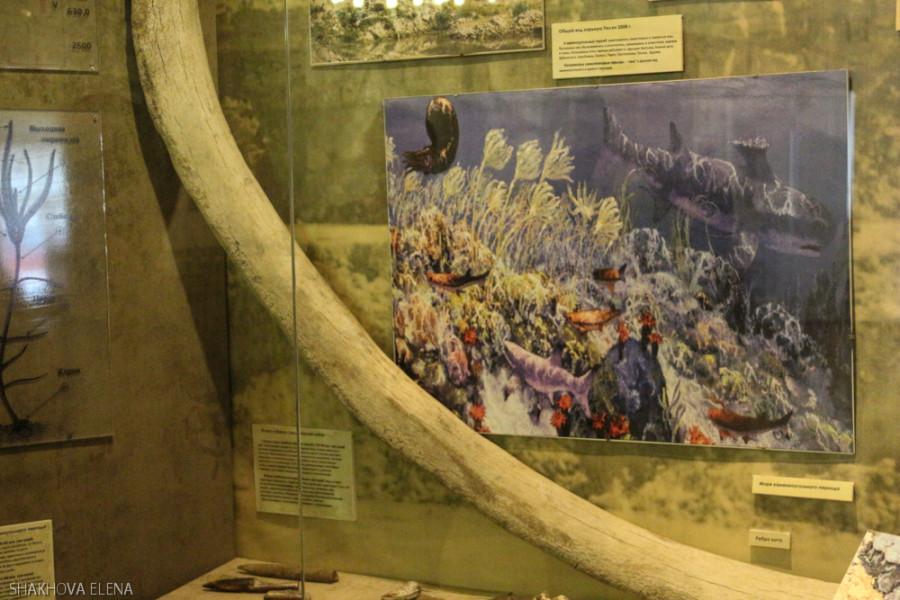 Коломна- краеведческий музей-2