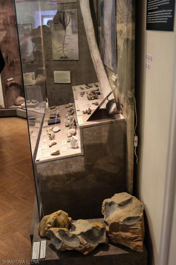 Коломна- краеведческий музей-4