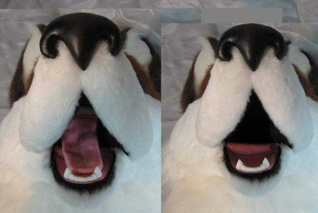 Presenting A Finished Husky Head How Do You Make Those