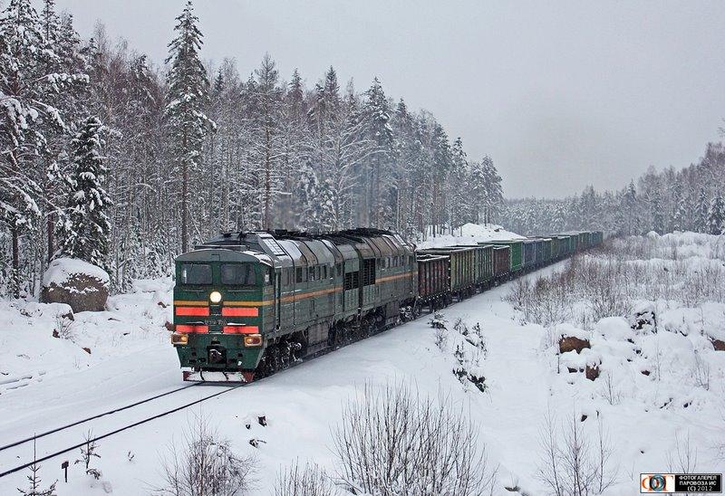 Тепловоз 2ТЭ116-1673 с грузовым поездом, перегон Гвардейское