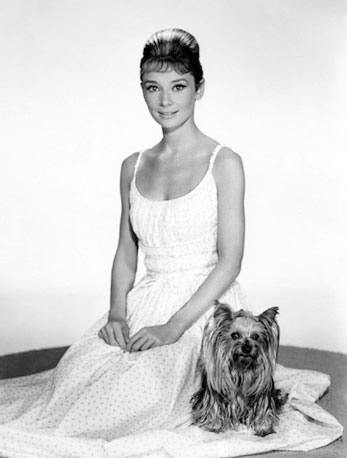 Audrey Hepburn (6)