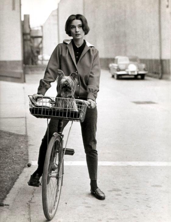 Audrey Hepburn (16)