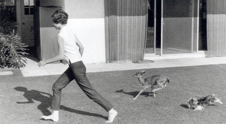 Audrey Hepburn, Pippin, Mr. Famous